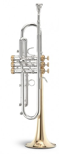 Trompeta Master Sib Image